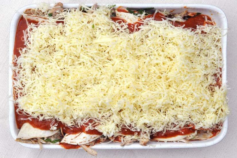 Chicken Enchiladas- cheese