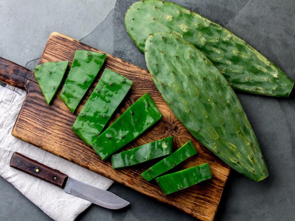 Cactus Nopales