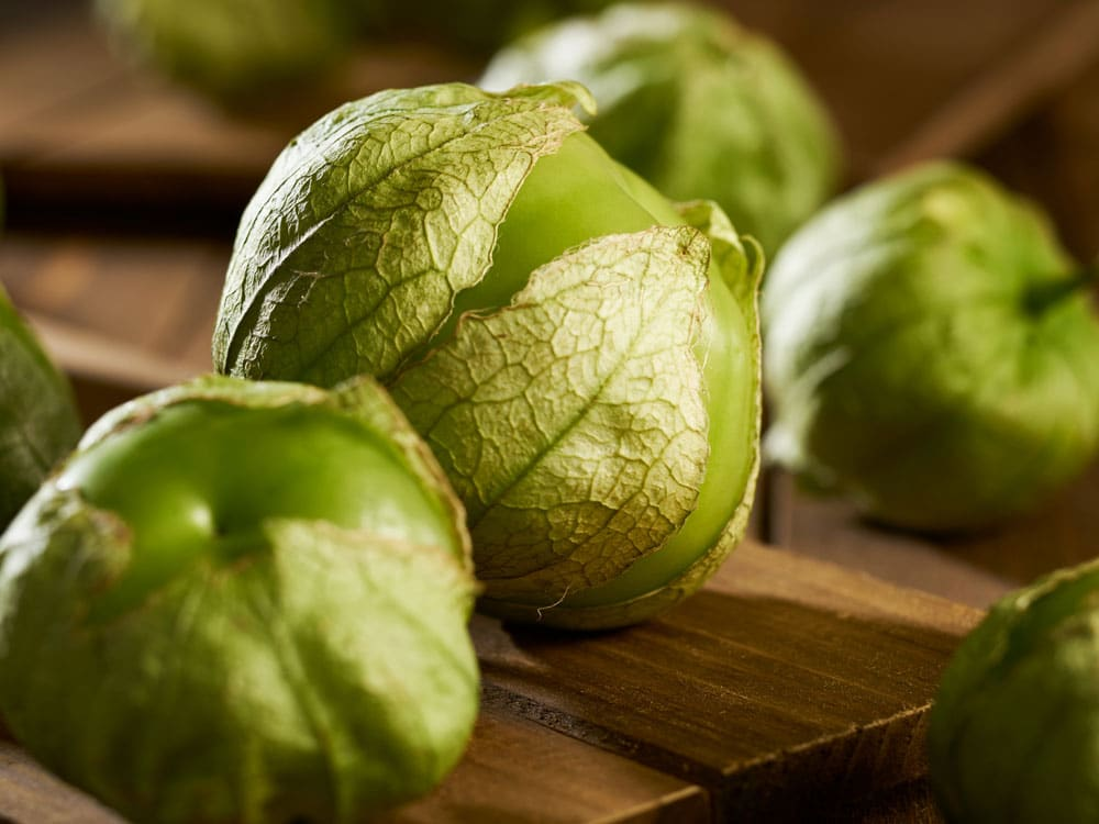What Is A Tomatillo