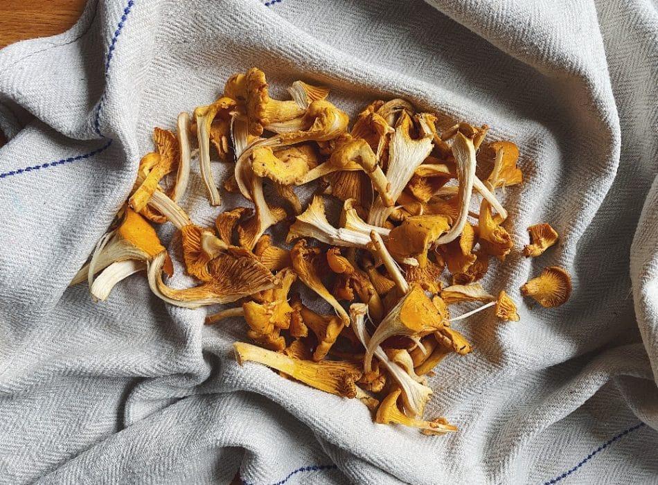Girolle mushrooms for Mushroom Molletes